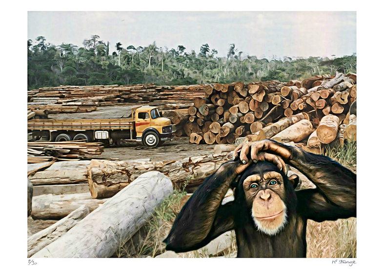 Mr Strange - Déforestation - Ma table de jardin