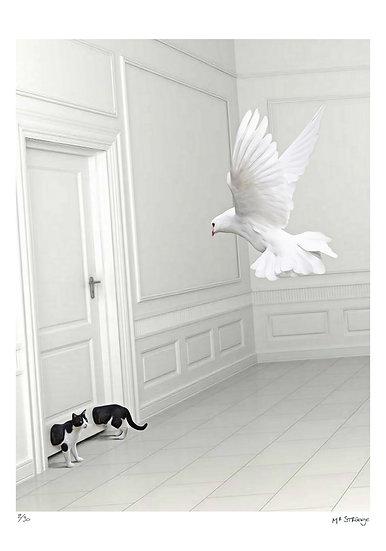 Mr Strange - La Colombe et le chat
