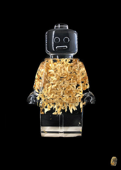 Vincent Sabatier - Roboclusion - Wood