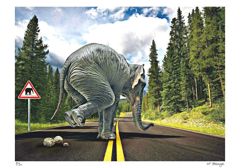 Mr Strange - Elephant Way
