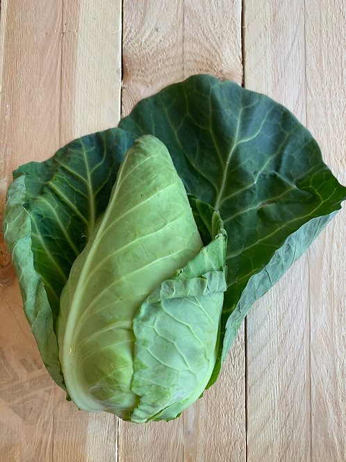 English Hispi Cabbage