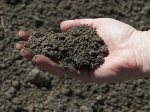 Biosolids (Humanure) - is this a scandal for the future?