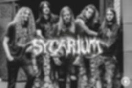 bands_sycarium.jpg