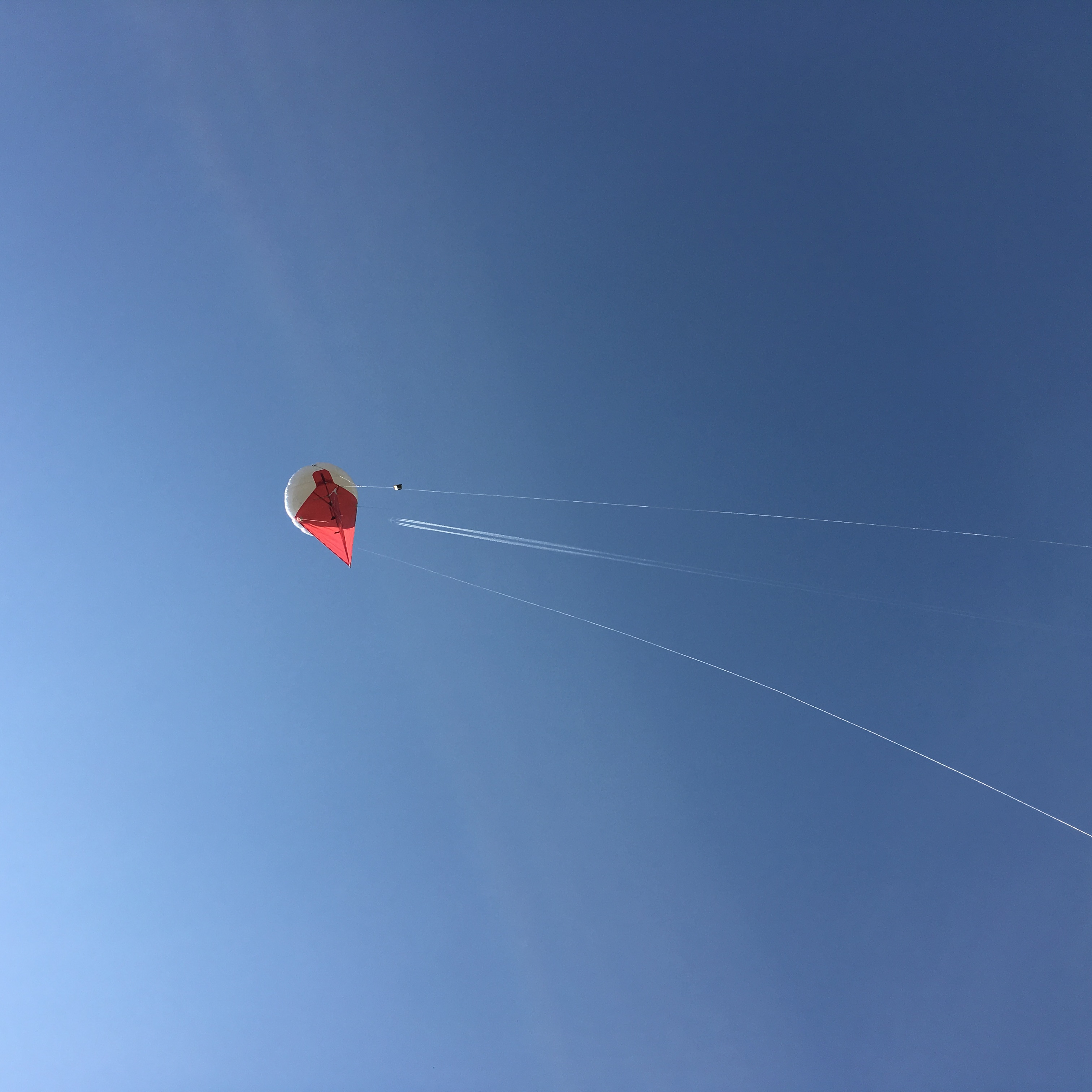 Air microbiome balloon project