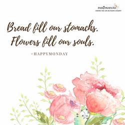 Flowers feed soul