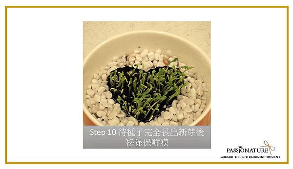 step 13.jpg