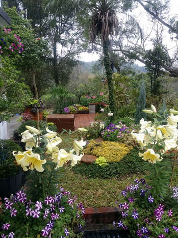 Champion Award Winning Fairy Themed Garden