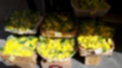 Lemons mine.png