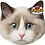 Thumbnail: Pet Faces Soft Feel Novelty Cushion - Ragdoll Cat