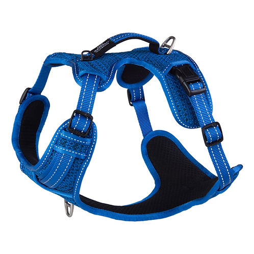 Rogz Utility Explore Harness - Blue