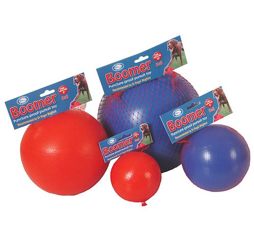 Boomer Ball Dog Toy