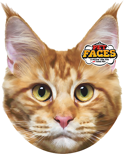 Pet Faces Soft Feel Novelty Cushion - Maine Coon Cat