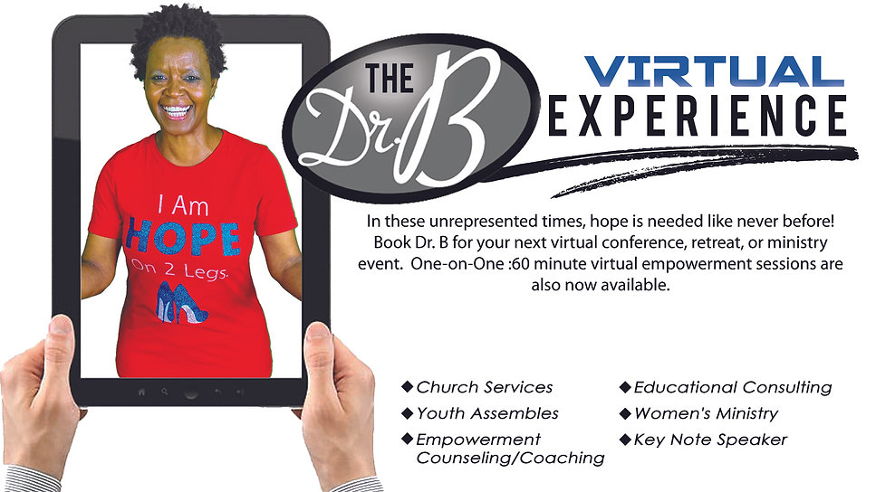 Virtual Experaince Dr B.jpg