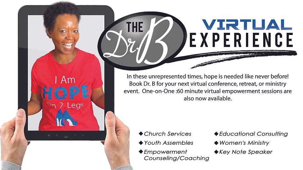 Virtual Experaince Dr B.jpg