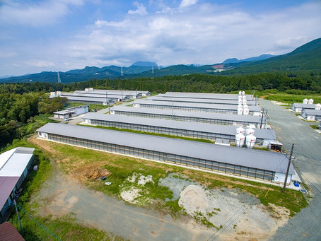 カナヤマフーズ菊池養鶏場大規模改修工事