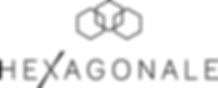Logo Hexagonale, la marque de montre française pour les hyperactifs