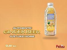 GINGER Juice WET bottle add 1.jpg