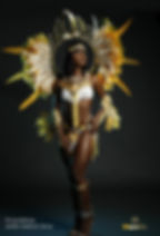 trinidad carnival packages