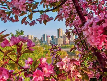 ¿Conoces Edmonton en primavera?
