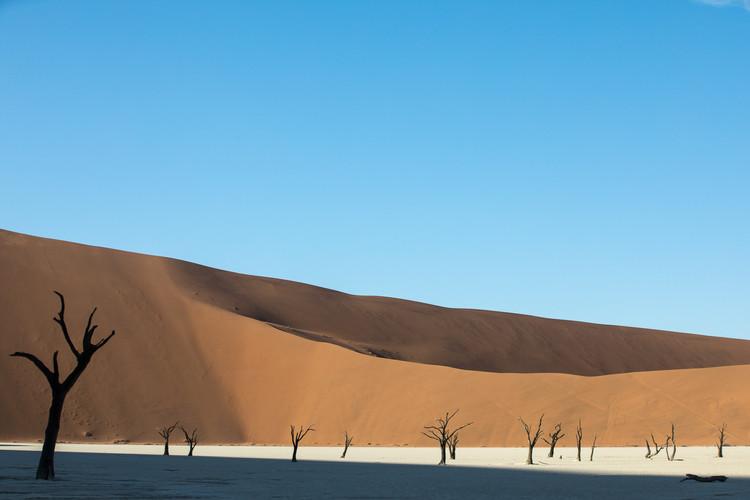 DEADVLEI, NAMIBIA 2017 #6