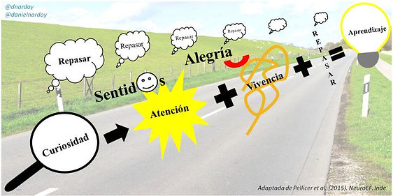 Orientaciones metodologicas _dnardoy.jpg