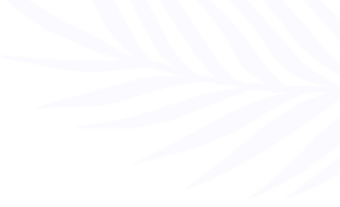 palmleaf transparent_white.png