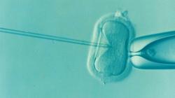 Fertilité | L'AVANCEE Centre gynécologique | Aix-en-Provence