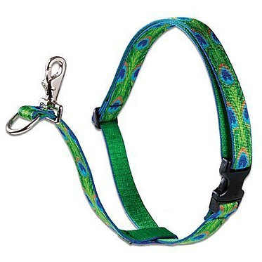 """Lupine 3/4"""" Nylon Webbing No-Pull Harness Tail Feathers"""