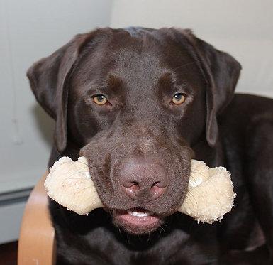 Nylabone Big Chew for Big Dogs