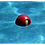 Teaser Ball Jolly Pets Floating