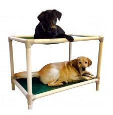 Kuranda Bunk Bed Indestructible Chew Proof Almond PVC Frame