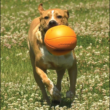 Nylabone Power Play Gripz  Basketball Play