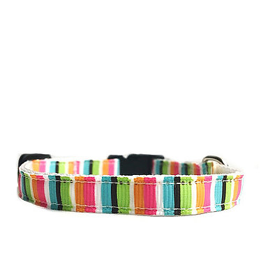 Paws n Claws Ribbon Collar for Cats Multi-Stripe