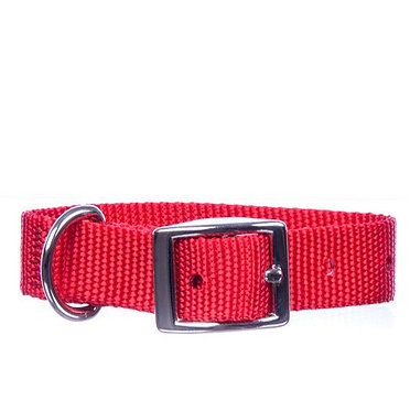 "Jeffers 1"" Nylon Collar Apple"