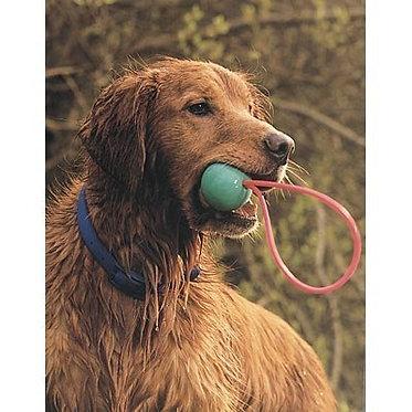 Go-frrr Slingshot Fetch & Retrieve Ball