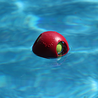Teaser Ball Jolly Pets Float