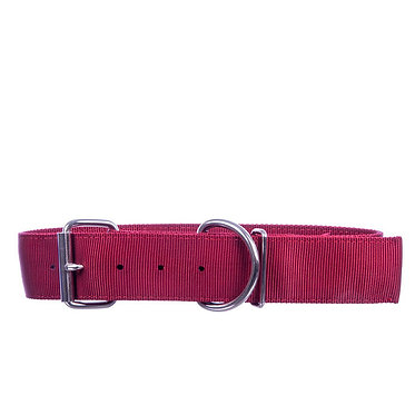 Big Dog Nylon Collar Red