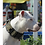 M1-K9 Big Dog Tactical Collar Wearing