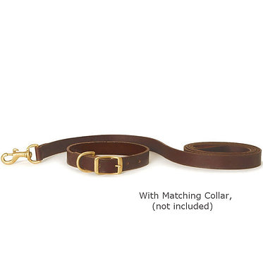 Jeffers Flat Leather Lead Leash Brown Matching Collar