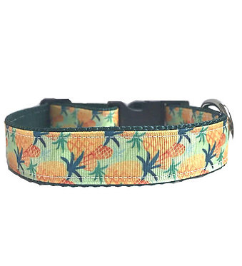 "Ribbon Couture Dog Collar Pineapples 1"" Inch Paws Claws"