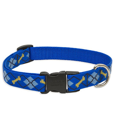 "Lupine 3/4"" Nylon Webbing Collar Dapper Dog Front"