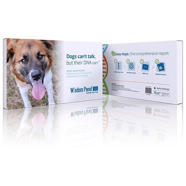 Wisdom Panel DNA Test Dogs