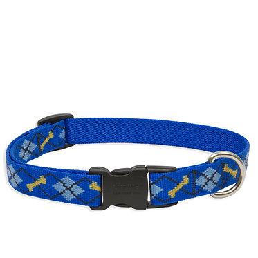 "Lupine 3/4"" Nylon Webbing Collar Dapper Dog"