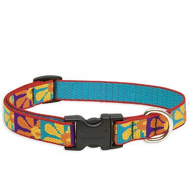 "LupinePet Lupine 3/4"" Nylon Webbing Adjustable Dog Collar Crazy Daisy Front"