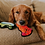 Outward Hound Invincibles Dog Chew Toys Play