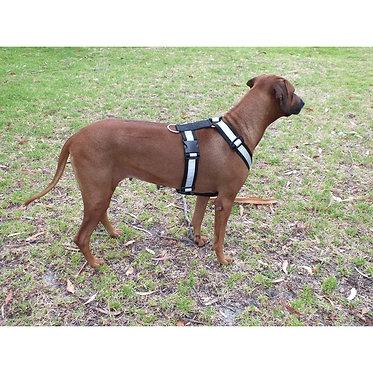 Mendota Tracking & Roading Harness Boxer