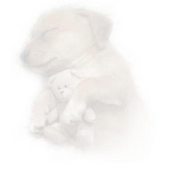 Snuggle.jpg