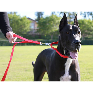 Grrrip 2-in-1 Big Dog Leash Great Dane Red