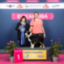 Jive Karis BIS Minor puppy 29 sept 2018