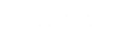 SPONSOR LOGO - ANDHOW.png